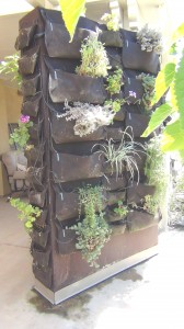 Vertical Gardening helps you stay Organized Beautifully even in your garden.